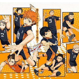 Haikyuu!! Karasuno High School Volleyball Teams Cosplay Costume