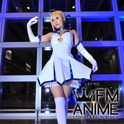 Fate/Unlimited Codes Alter's Saber Lily Type Moon 10 Anniversary Version Cosplay Costume