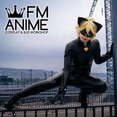 Miraculous: Tales of Ladybug & Cat Noir Adrien Agreste Cat Noir Cosplay Costume